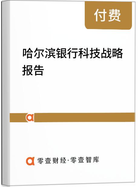 哈尔滨银行科技战略报告